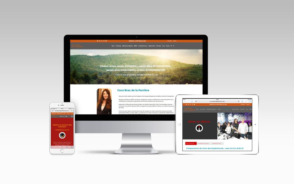 Réalisation du site internet - Nahécom